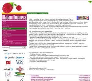 Článek nawebu Madam Business